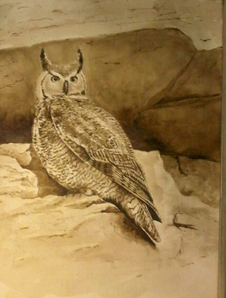 Great Horned Owl watercolors ink made from black walnut hulls